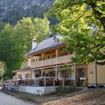 Ramsaualm am Laudachsee